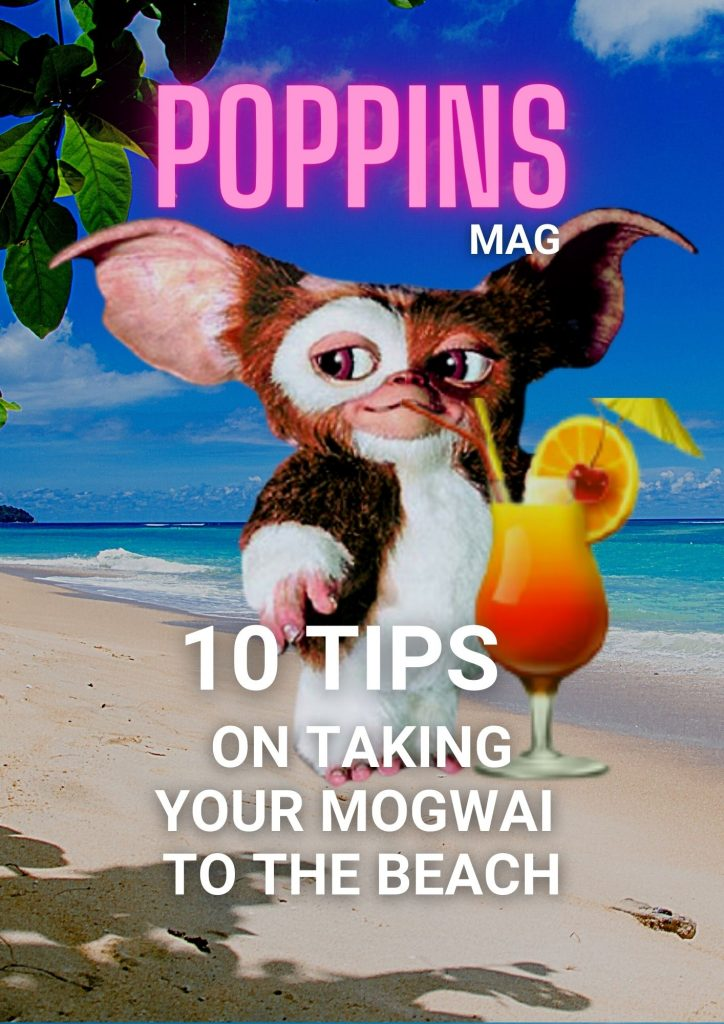 10 tips on taking your mogwai to the beach