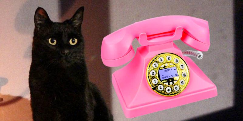 nouvelles aventures de sabrina l'apprentie sorcière salem le chat noir téléphone rose